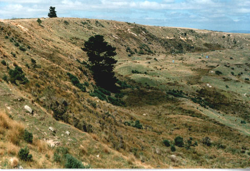 Fig. #1: The eastern edge of the Tapanui Crater